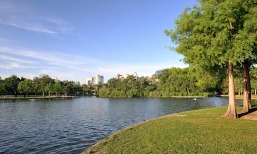 kingwood-real-estate-buyer-parks-safety-affordable-community